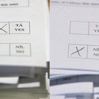 Oireachtas committee to begin three-day hearings on fiscal compact referendum