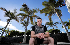 Ireland shake off the travel and get serious about Wallabies challenge