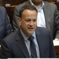 'Revenue are counting the chip bags coming out of chip shops' - Taoiseach defends use of PIs to investigate consultants