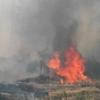 Dublin Fire Brigade battles huge 'deliberate' gorse fire