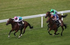 The £1m showdown: Frankel, Black Caviar lured towards Goodwood
