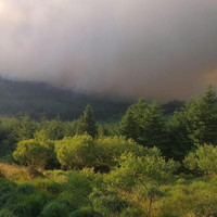 Firefighters tackle large forest blaze on Slieve Bloom