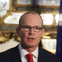 Tánaiste 'looking forward' to seeing what the UK's Brexit approach is made of