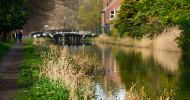 Boy jailed for 12 months as Dublin cyclists blighted by canals menace
