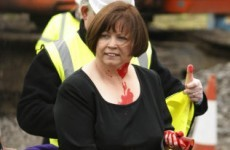 Slideshow: Twitter responds to Mary Harney 'paintgate'