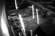 CCTV footage shows moment explosive device was thrown at home of Gerry Adams