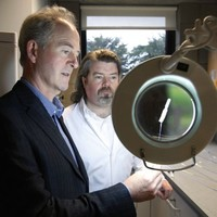 Irish company to produce medical device invented at UL