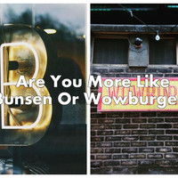 Are You More Like Bunsen Or Wowburger?