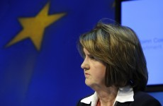 Joan Burton to helm Labour's 'Yes' campaign in referendum