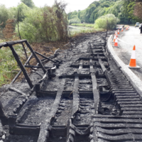 'Naked, wanton vandalism': Boardwalk near Battle of the Boyne site damaged in suspected arson attack
