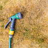 Poll: Would you report someone for breaking the hosepipe ban?