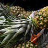 Turkeys, pineapples and artichokes - researchers want to know what Irish people ate hundreds of years ago