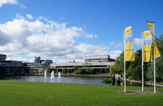 The College Guide To UCD: Insider tips, top study spots, and the best chicken fillet roll