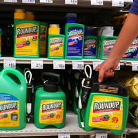 Company behind Roundup weedkiller ordered to pay €254 million to gardener living with cancer