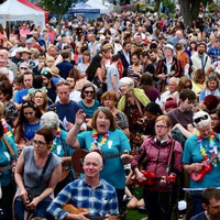 'You can pick up a song in a week': Why Irish people love the ukulele