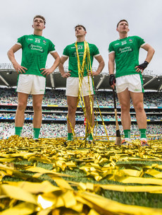 14 great photos that capture the agony and ecstasy of Limerick's All-Ireland win