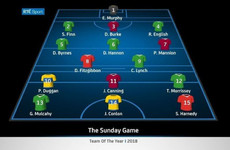 Here's The Sunday Game's Hurling Team of the Year for 2018