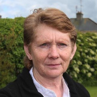 Corless 'disappointed' pope didn't mention Tuam, says abuse survivors need more than prayers
