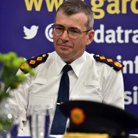Tribunal fallout, resources, rock-bottom morale - The challenges facing the new Garda Commissioner