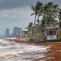 Child killed as Tropical Storm Gordon makes landfall on US Gulf Coast