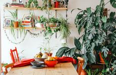 8 beautiful interiors trends set to be big in 2019, according to Irish designers