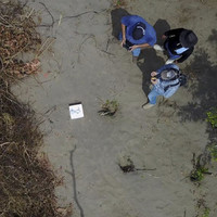 Mass grave site with 166 bodies found in Mexico