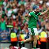 Limerick All-Ireland hurling winner suffers torn cruciate in club game