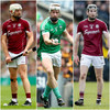 Galway pair and Limerick midfielder nominated in battle for 2018 Hurler of the Year