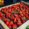 Australia offers large reward for information as sewing needles found in strawberries