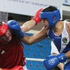 London 2012: Dream over for Tommy McCarthy as he loses in boxing semi-final