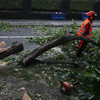 Tánaiste says State infrastructure was prepared for Storm Ali - but the public weren't