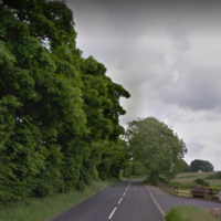Man dies after being hit by falling tree in Northern Ireland