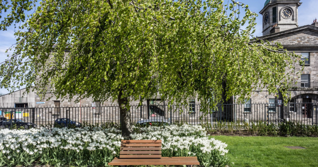 Your guide to Grangegorman: Historic area centred on an impressive new campus