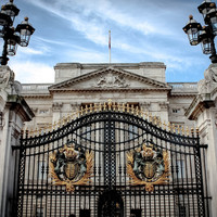 Man 'armed with Taser' arrested at Buckingham Palace