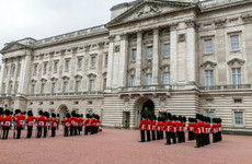 Man with taser arrested at Buckingham Palace made 'genuine error'