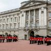 Man with taser arrested at Buckingham Palace made 'genuine error'