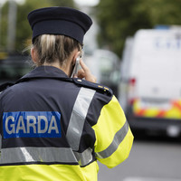 Gardaí arrest 18 people in Carlow; 10 people have been charged