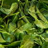 Bags of unwashed spinach and mixed leaves recalled over presence of bug-causing bacteria
