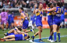 West Coast Eagles snatch AFL Grand Final glory after epic battle with Collingwood