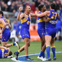 West Coast Eagles snatch AFL Grand Final glory after epic battle with Collingwood