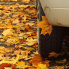 4 road hazards to look out for in autumn... and how to avoid them
