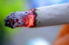 Smokers' body rejects plans to ban smoking in public parks