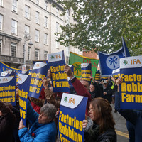'Factories have torn the hell out of prices': Farmers march on Kildare St to protest beef prices