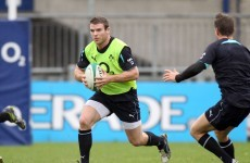 Ireland ready for a bit of Boks bullying