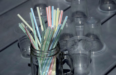 Poll: Do you make efforts to reduce how much single-use plastics you buy?