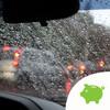 Met Éireann warns of 'ferocious looking beast' as storm expected to hit overnight on Thursday