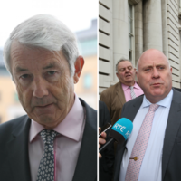 'There is a compelling public interest': Two more Independents will support Fine Gael in key votes