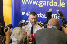 Minister to amend law to allow Garda Commissioner work past the age of 60