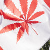 Cannabis is legal across Canada from today and 109 stores are opening immediately