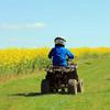 Government to oppose quad bike and scrambler regulation Bill